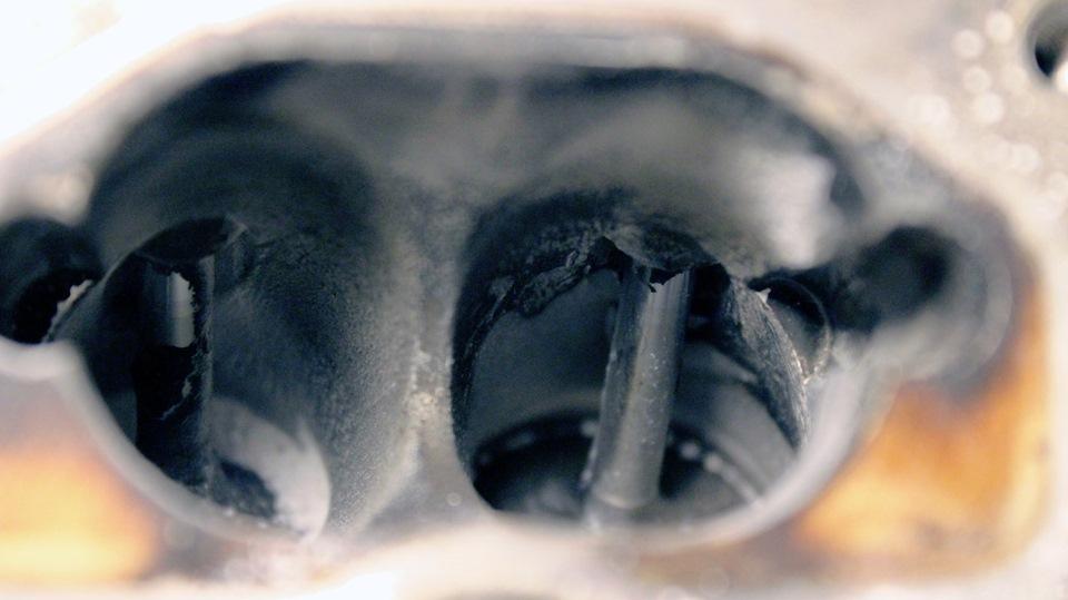 чистка дегтем от паразитов отзывы