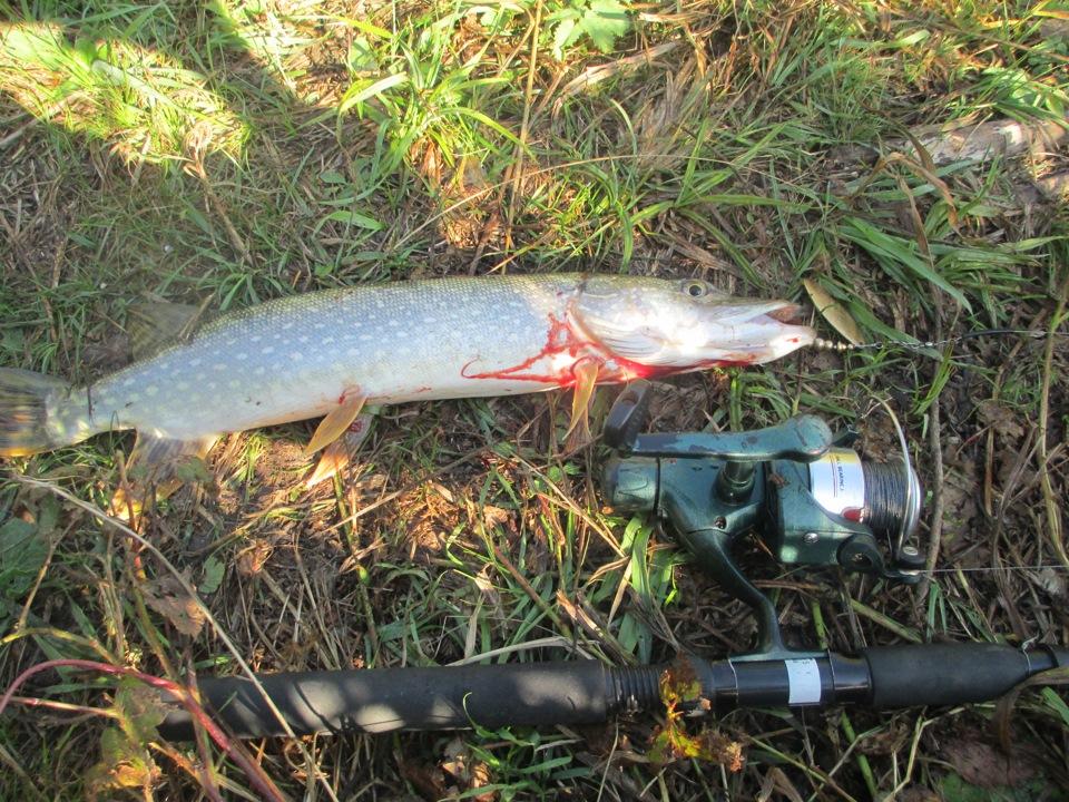 Алтайский край рыбалка на озерах