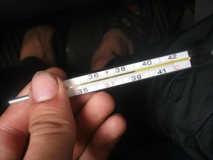 Как набить температуру на градуснике (ртутном и электронном)