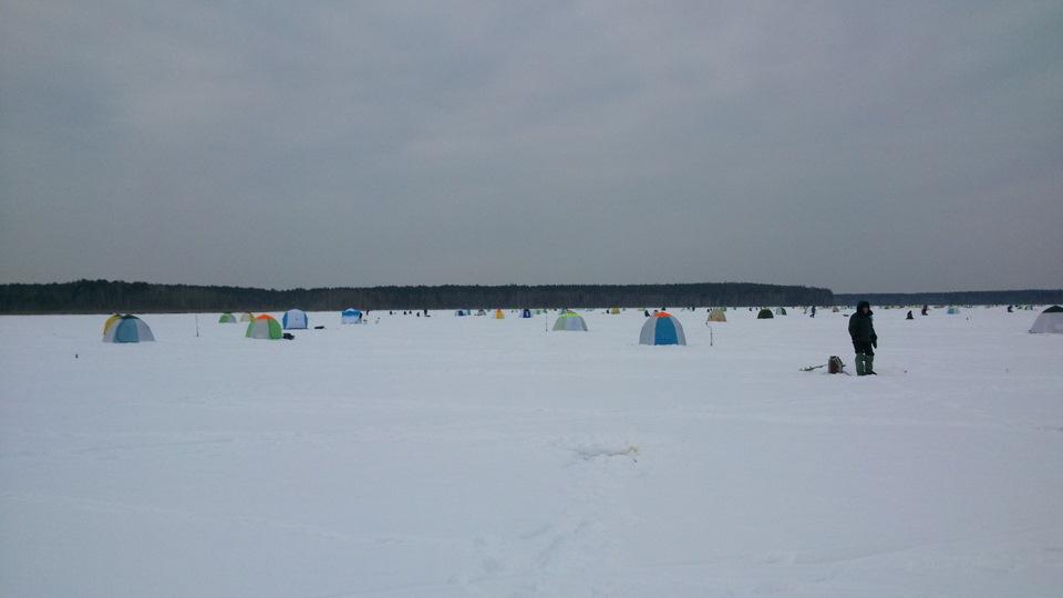 база отдыха лагуна белоярское водохранилище фото элитные