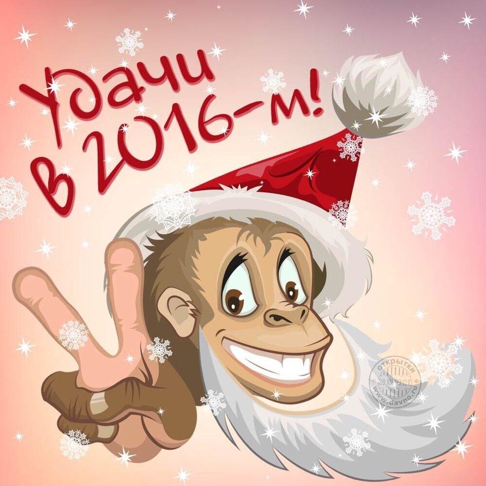 Открытка на новый год 2016 своими, голубь смешной открытки