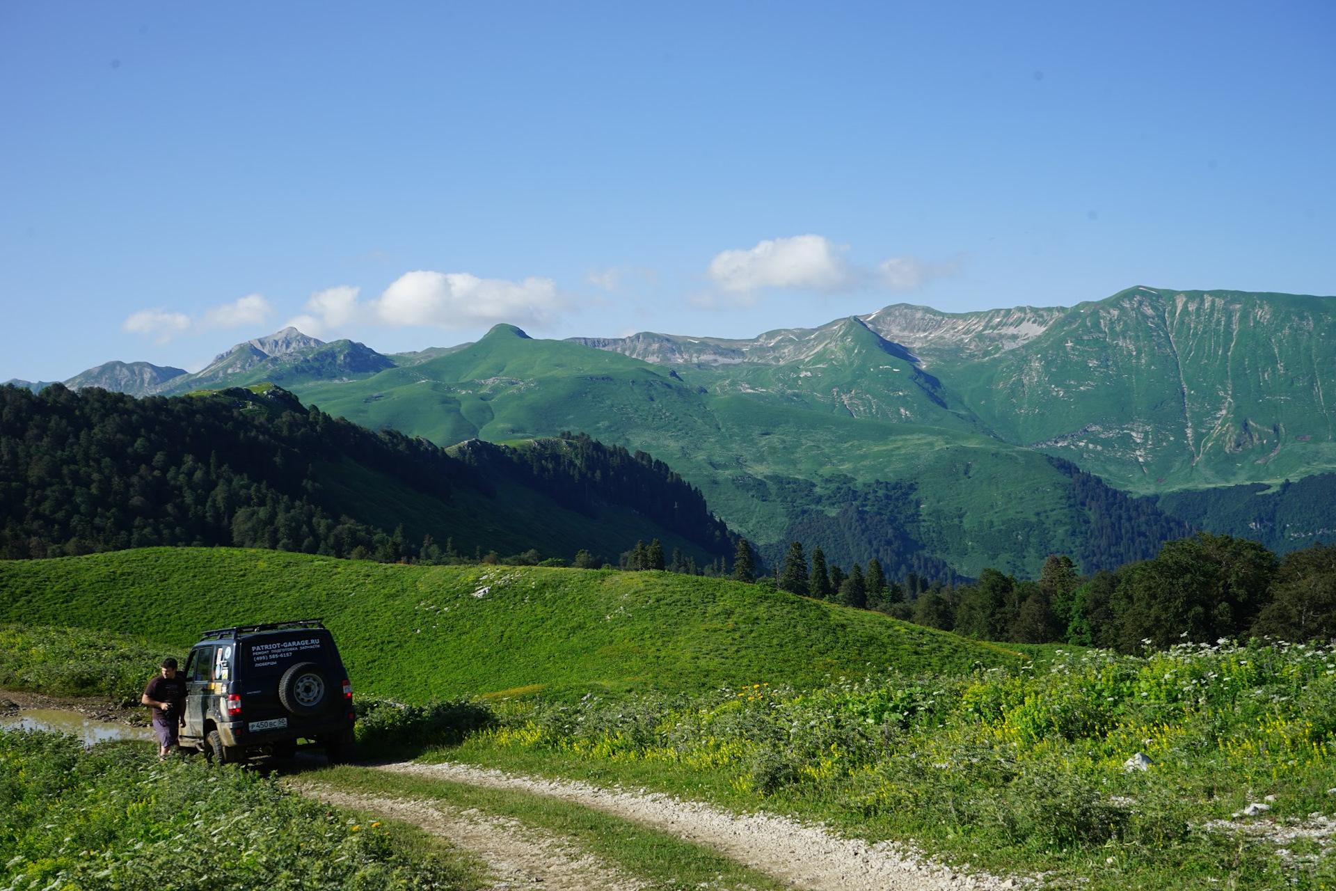остаться альпийские луга в абхазии фото они высохнут