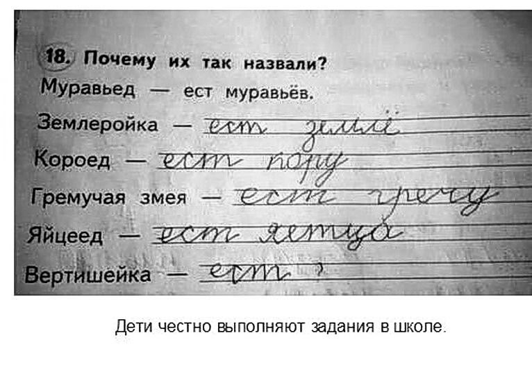 Сочинения детей смешные картинки, препинания