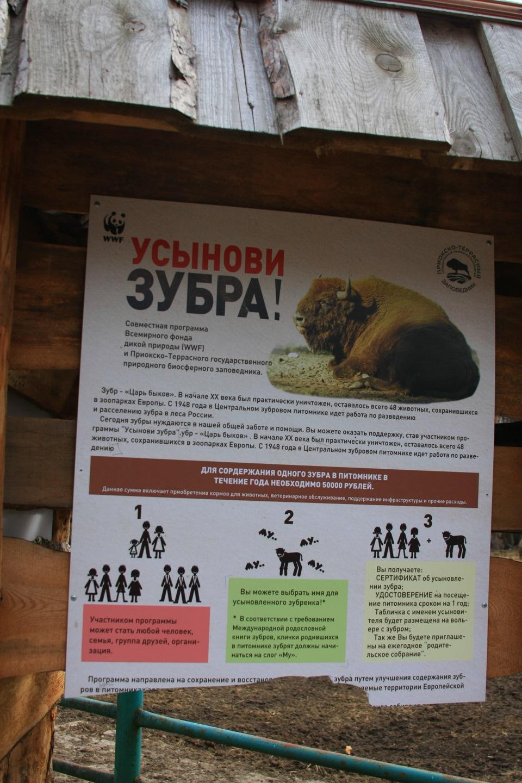 какой размер пениса считается нормальным Североуральск