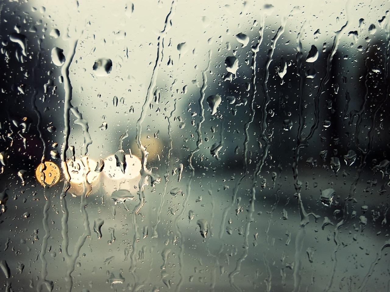 дождливое утро картинки