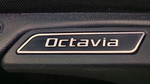 коврики в карманы дверей skoda octavia