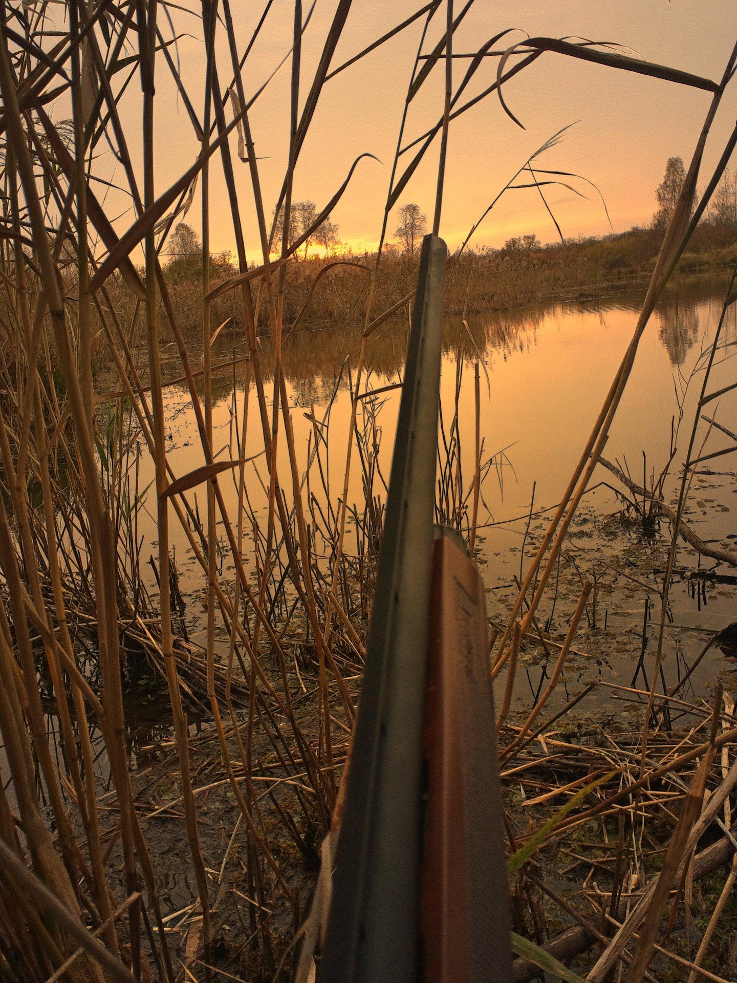 подборка фото с весенней охоты на уток сайдинг