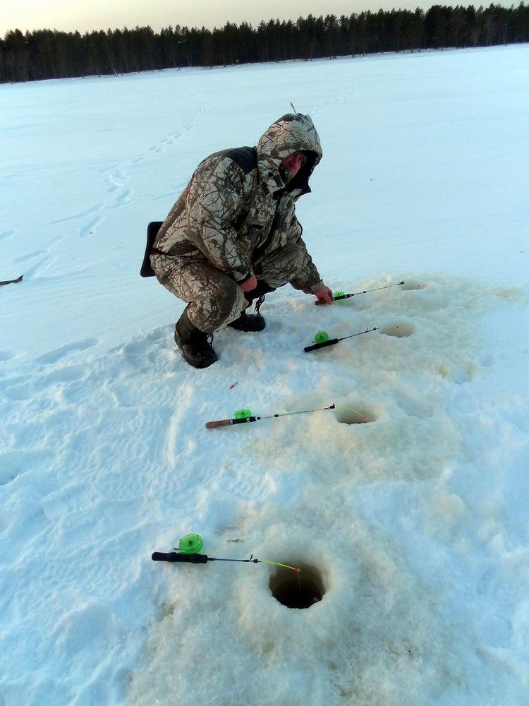 Лучшие места для рыбалки в Архангельской области