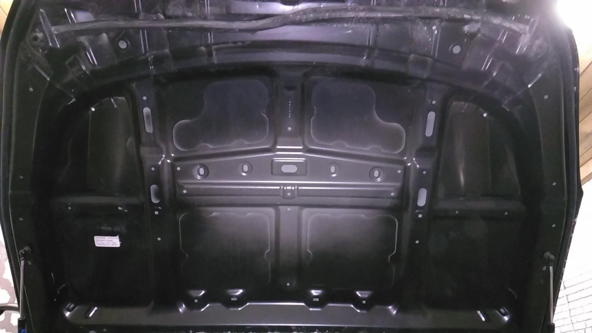 Жопа бегемота на лобовом стекле