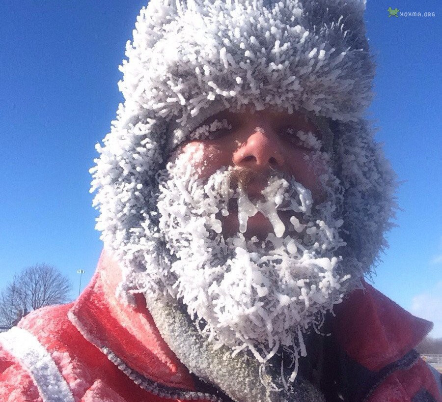 мог мороз на улице прикольные фото много различных готовит