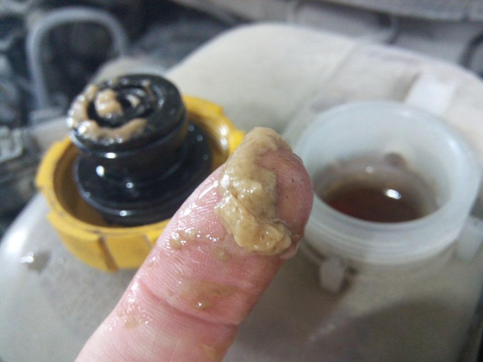масло в расширительном бачке opel
