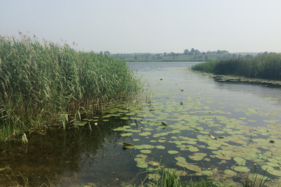 озеро — начало реки Москвы