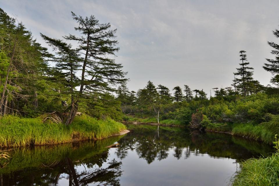наши катангли сахалинская область фото области называют