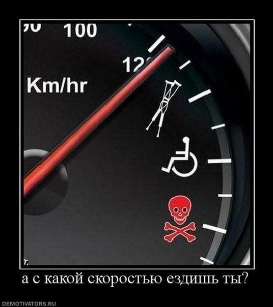 Смешная картинка про скорость