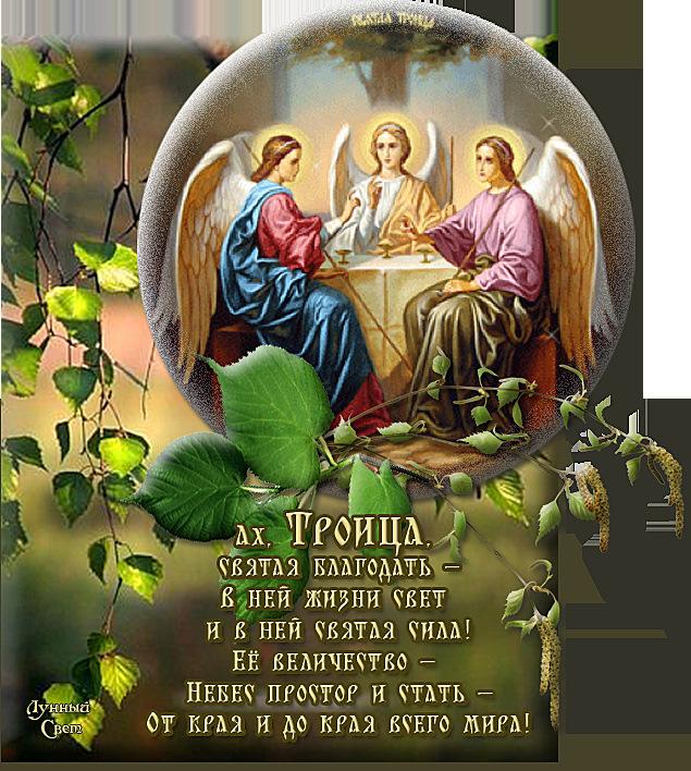 Картинки красивые поздравления с троицей, ноки прикольная открытка