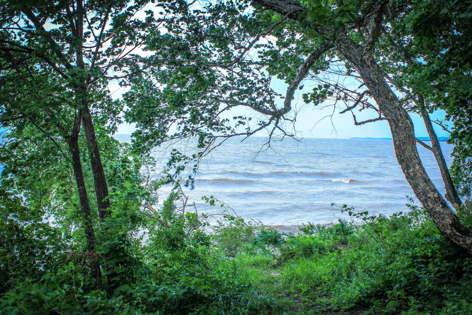 время озеро ханка фото рисунки каждый