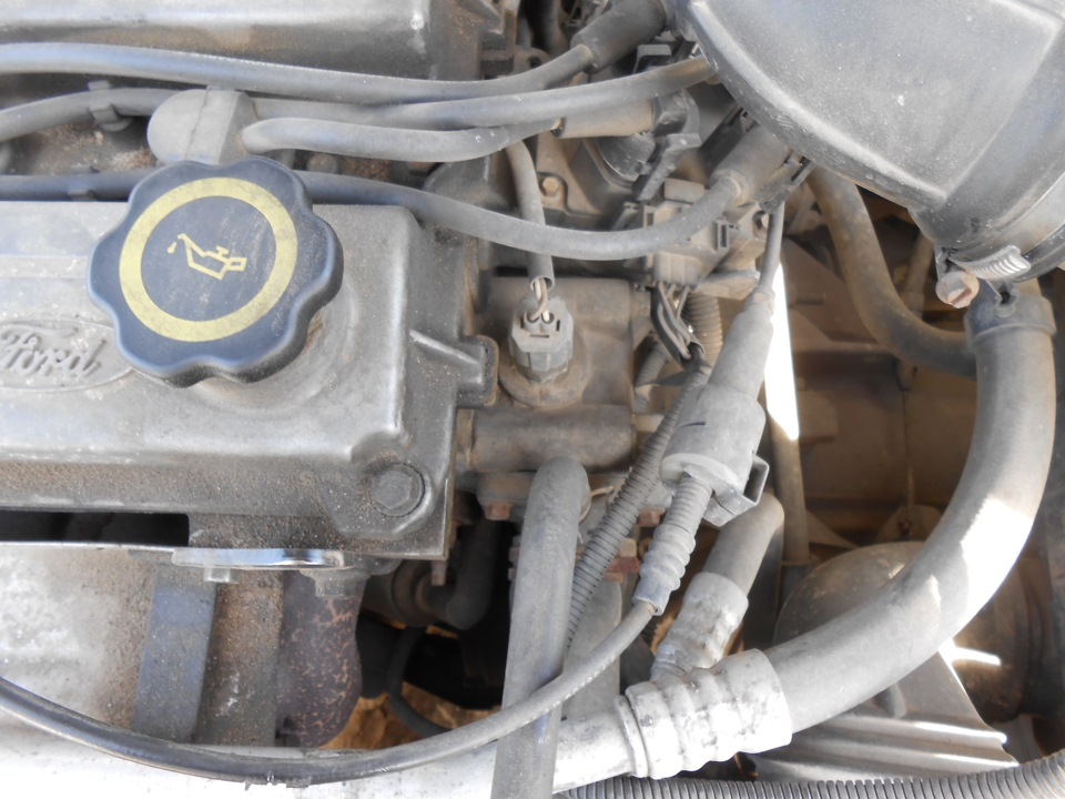 How to put antifreeze in ford escort