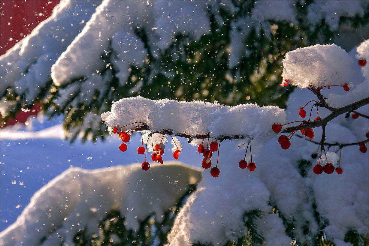 Картинки анимации снегопада