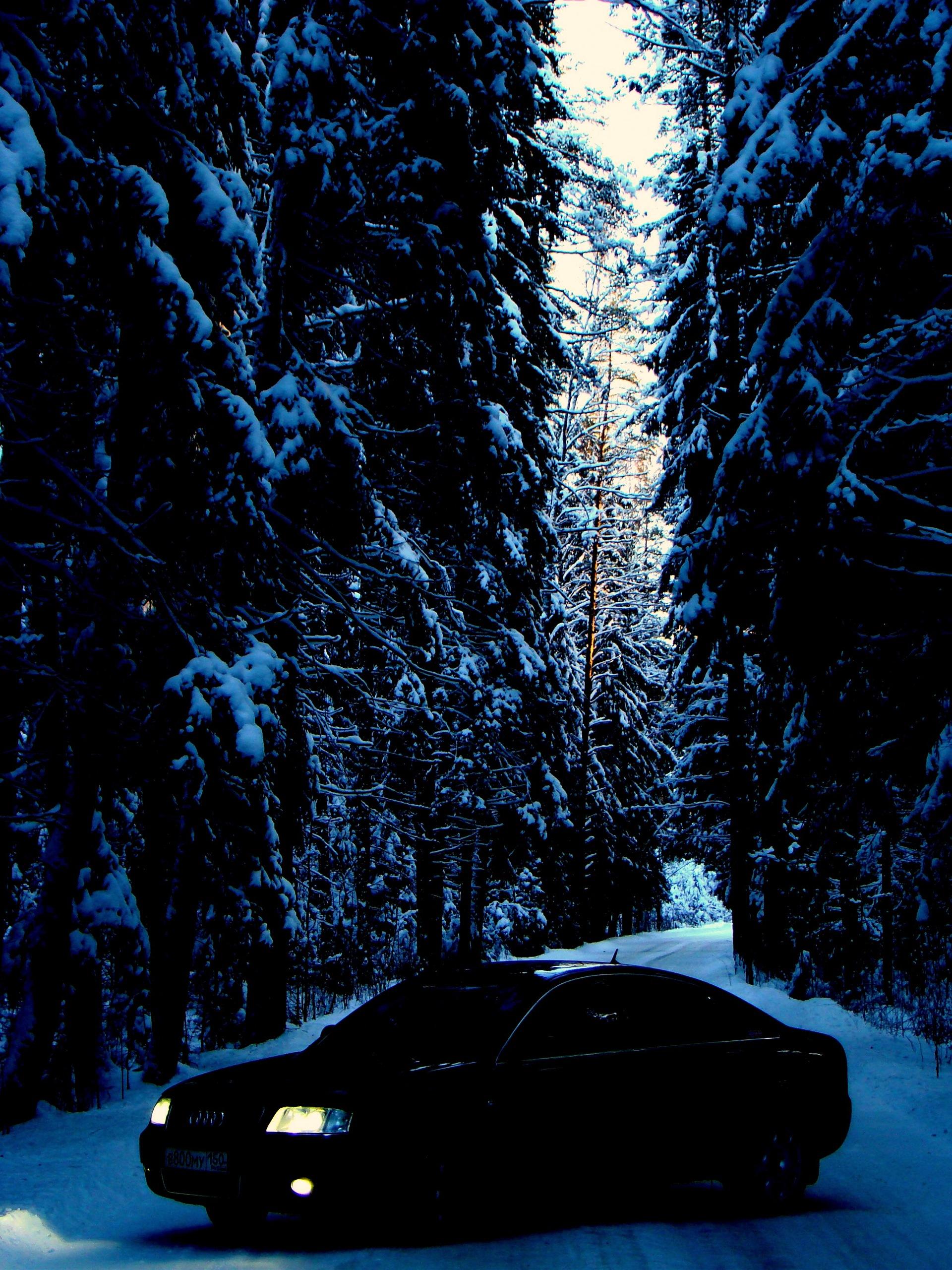 Песня в зимнем лесу минусовка