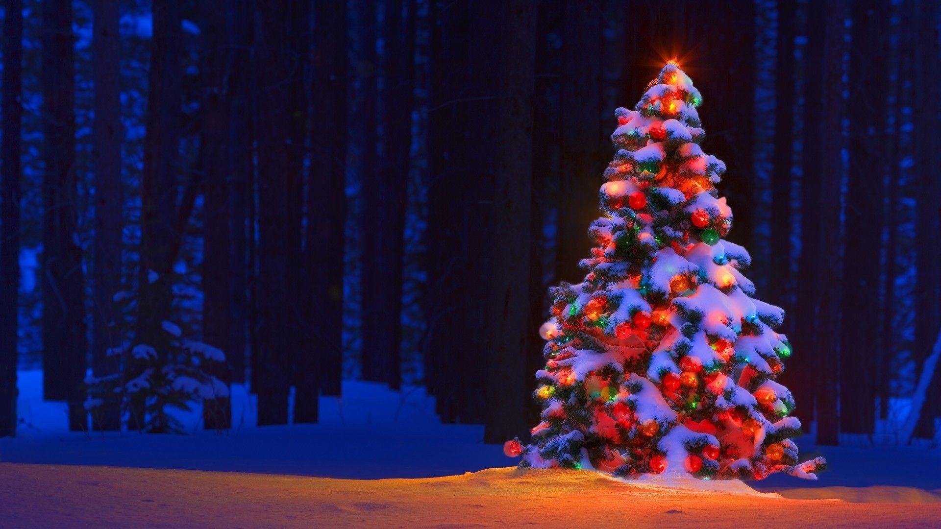 Марта картинки, картинки елка новогодняя на рабочий