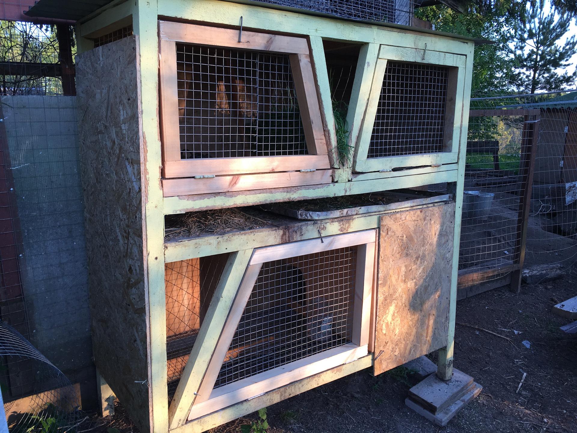 Поддоны для клеток для кроликов своими руками фото 796