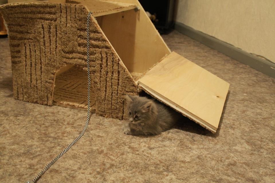 Кошкин дом своими руками фото