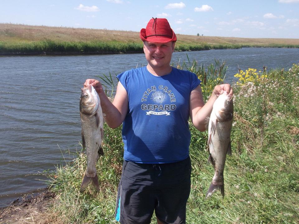 рыбалка толстолобика в ставропольском крае