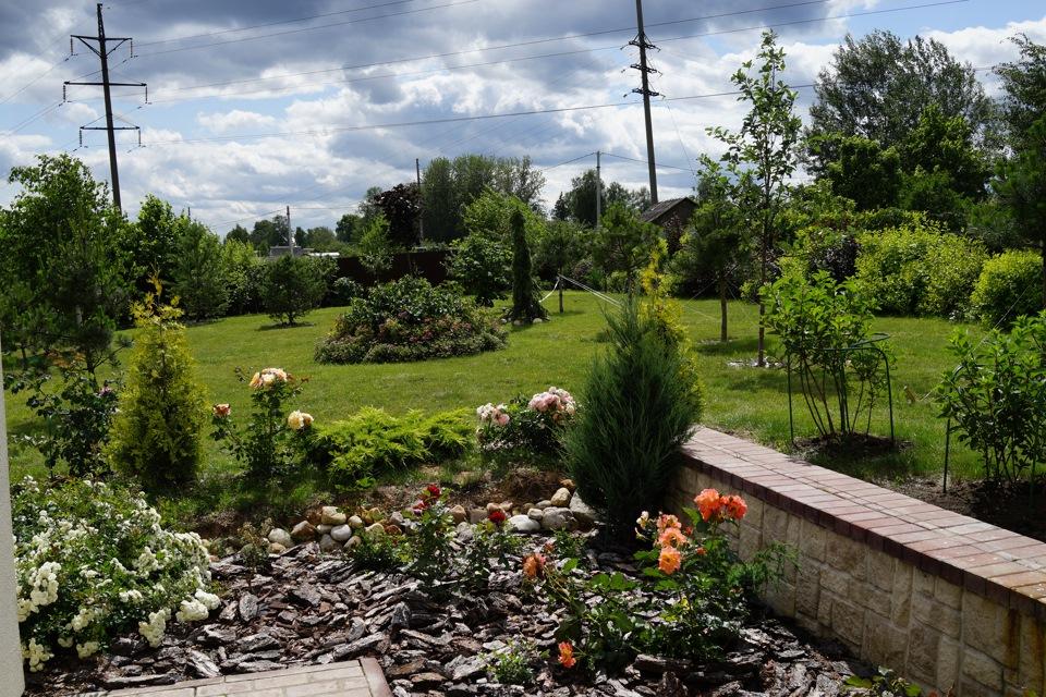 Любимый сад фото