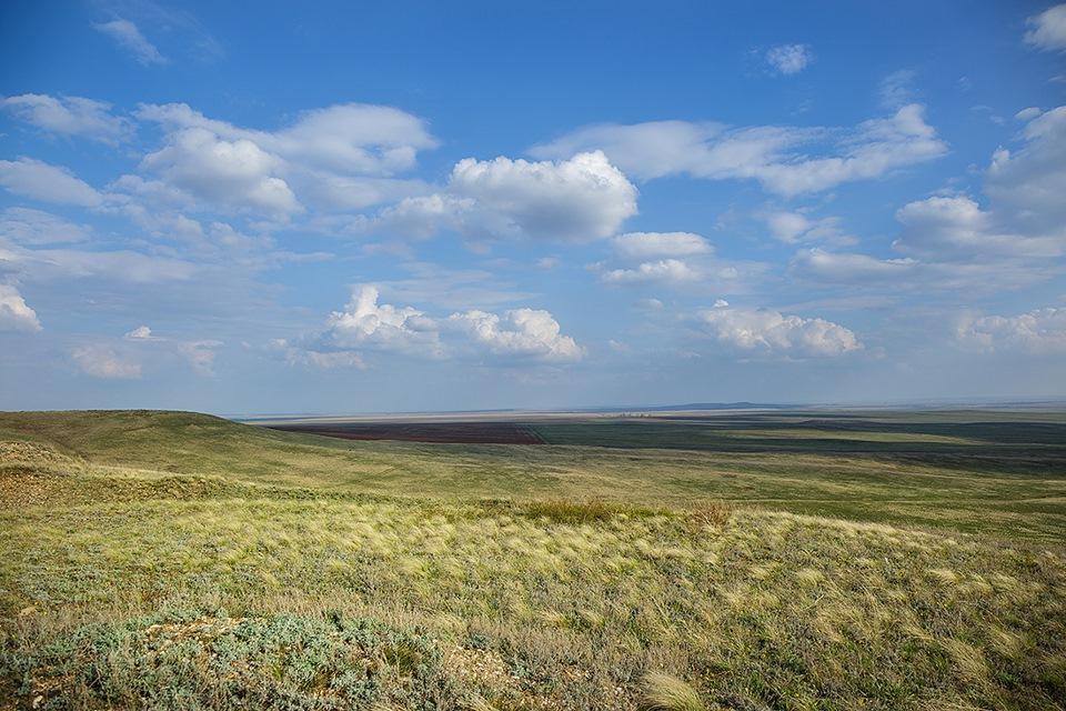 Картинки степь оренбургская