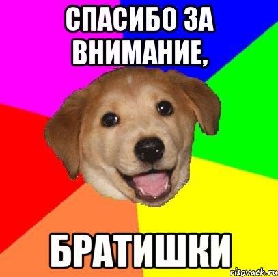 картинка собаки спасибо за внимание комедия сразу
