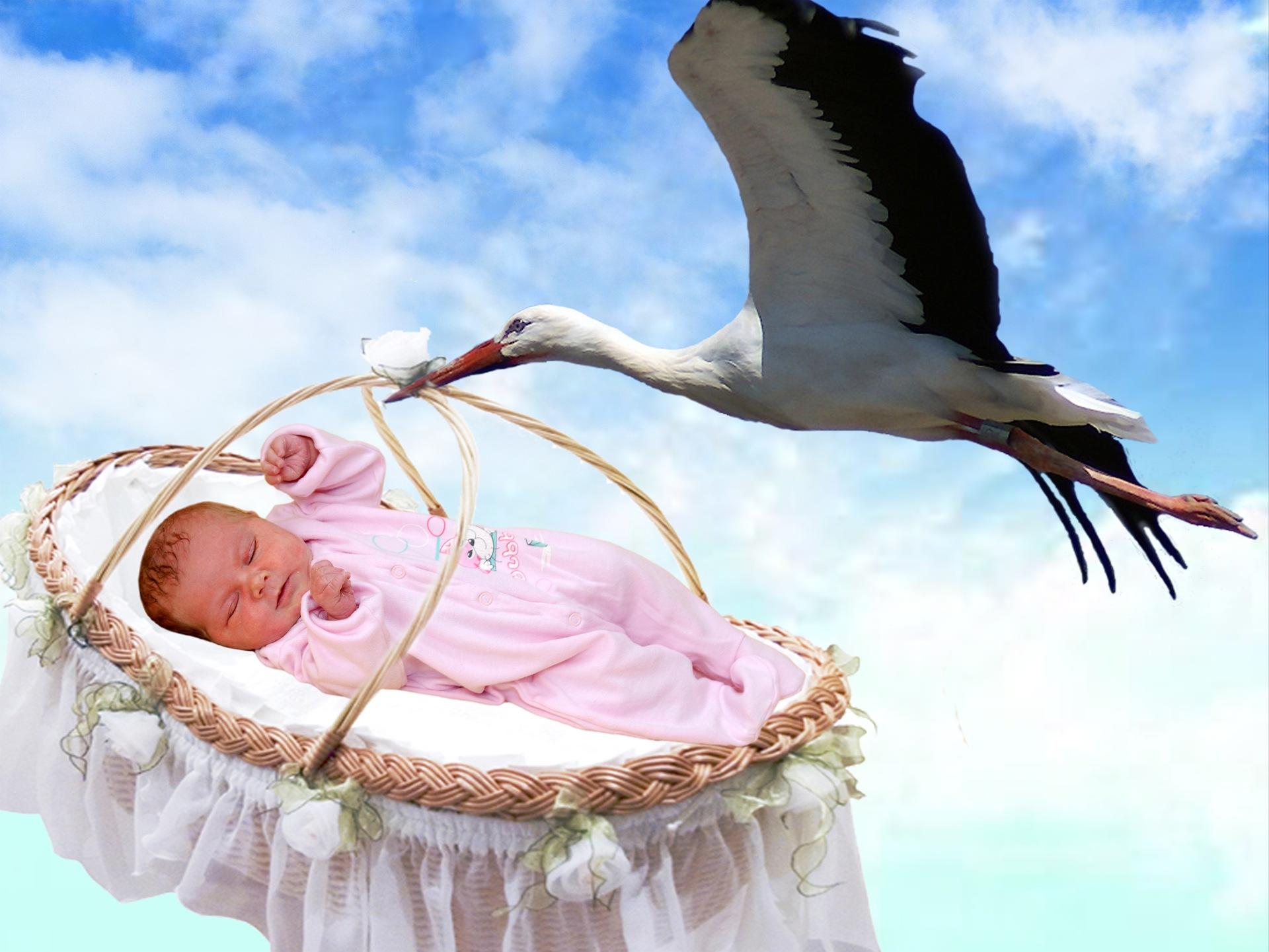Картинки с младенцами красивые с аистом, картинки цветочки днем