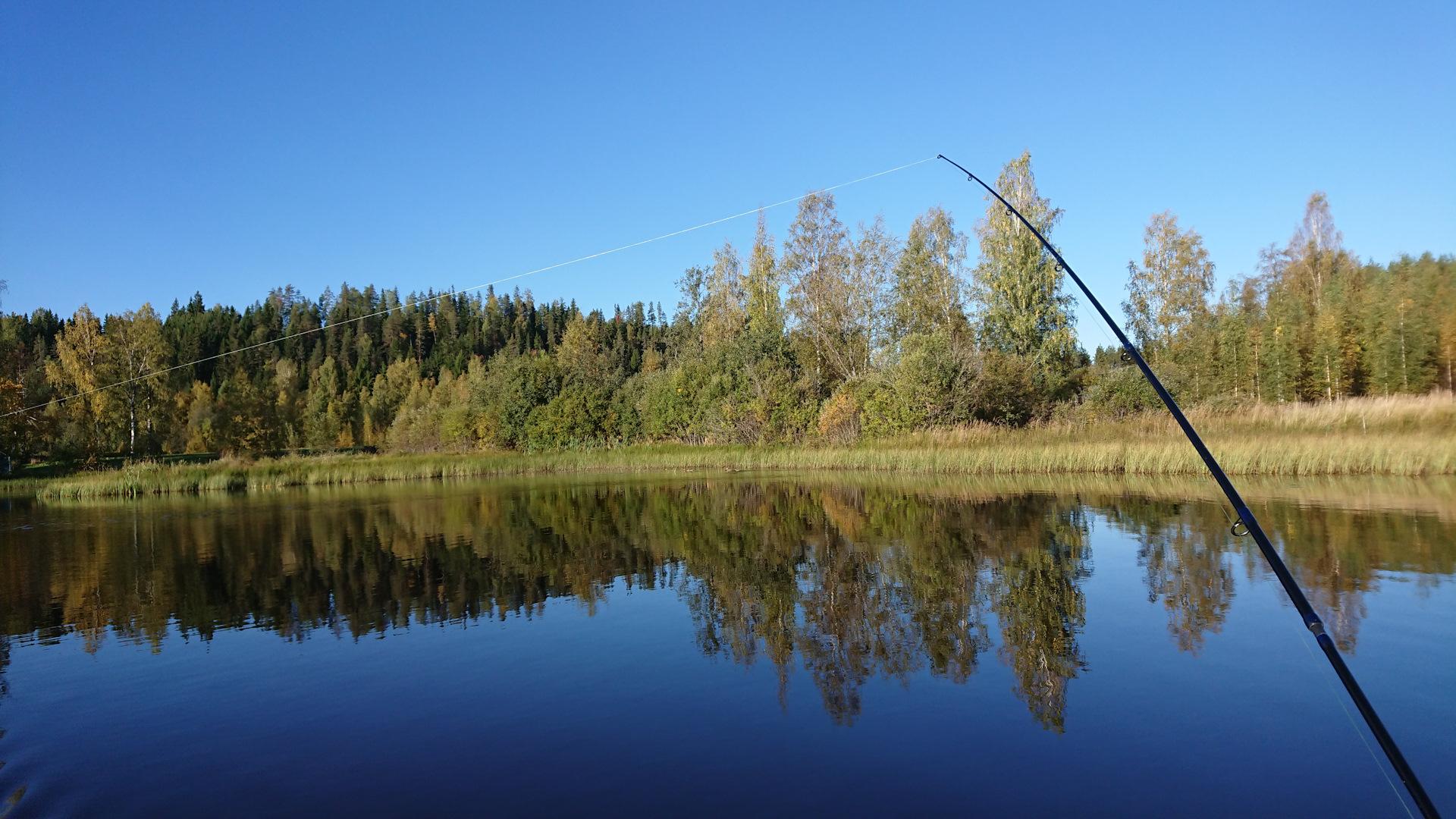 Озеро финское в парголово рыбалка