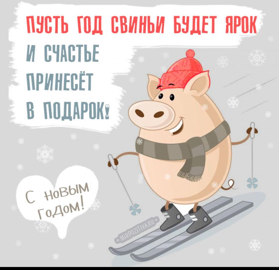 Вторник хорошими, прикольные картинки скоро новый год и свинья