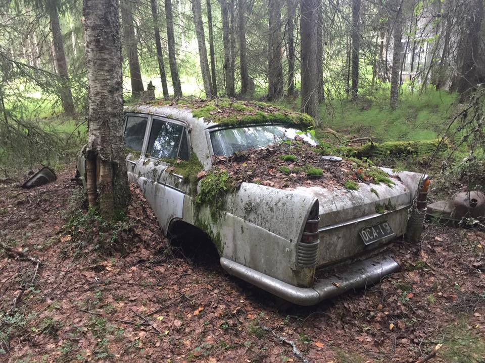 правило, фото брошенных автомобилей в лесу друзей, соответственно